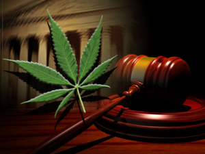 U.S. Federal Court To Review Medicinal Marijuana Benefits