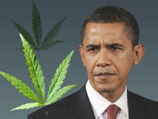 President Obama: Legal Recreational Marijuana Should Not Be Top Federal Priority